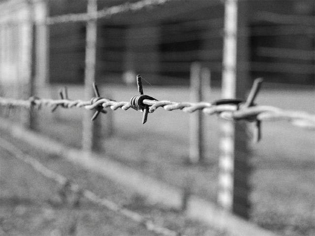 Кровавые земли. Европа между Гитлером и Сталиным