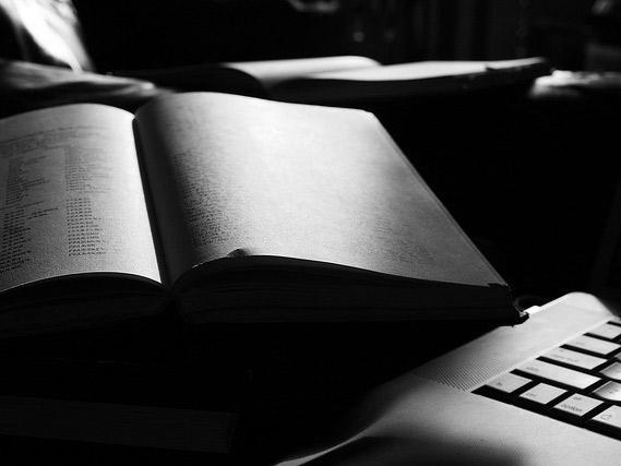 Языки общественных наук