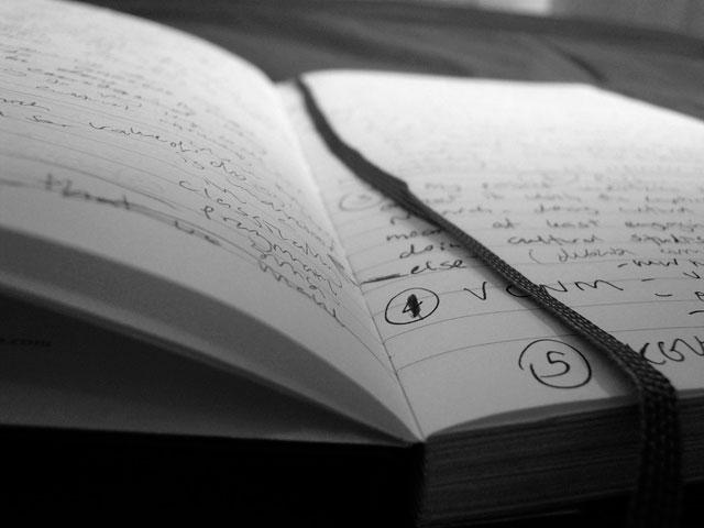 «Как беззаконная комета…»: культурные исследования в поисках академической идентичности